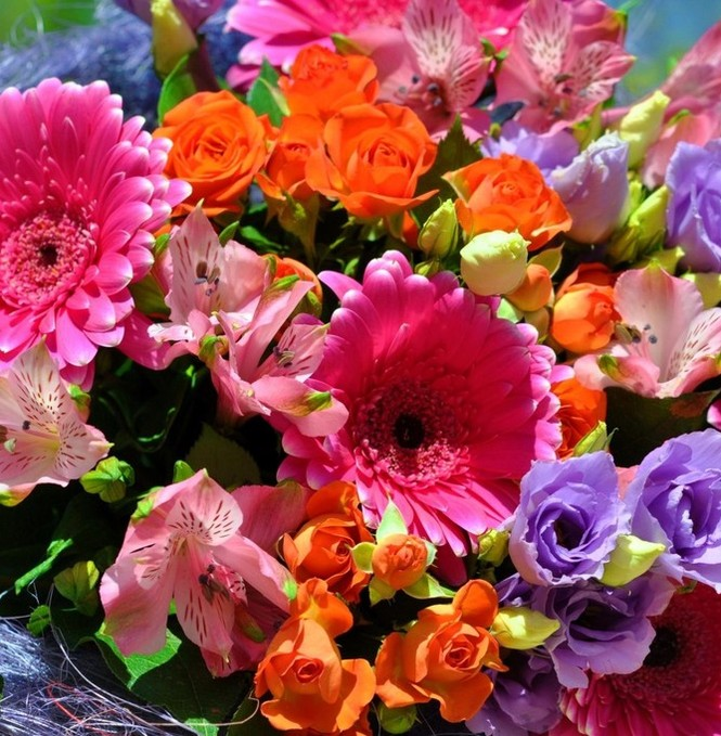 Фото крупных красивых цветов